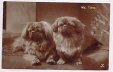 DOGS - PEKINESE - We Two - Real Photo - c1927
