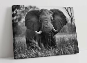ELEPHANT 5 LARGE CANVAS WALL ART FLOAT EFFECT/FRAME/PICTURE/POSTER PRINT-GREY