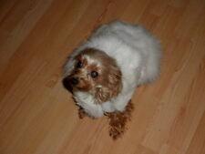 ~*~ Mink Fur Small Pet Dog Coat Clothes S M~*~  snowwhite