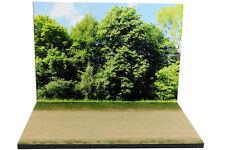 Diorama Chemin forestier / Forest road - 1/43ème - #43-2-B-B-016