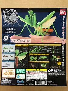 """Bandai mantis capsule Type """" 05 """" Translucent color"""