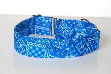"1"" Small Whippet Martingale Dog Collar Blue Bandana"