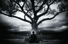 Framed Print - Buddhist Zen Master Sitting Under a Tree (Picture Buddha Art)