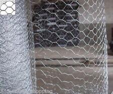 Galvanised Steel Chicken Rabbit Wire 10m 5m 2 widths Mesh Aviary Fencing Garden