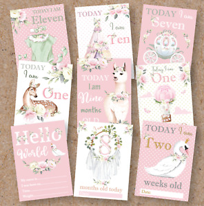 Floral Baby Girl Milestone Cards • Baby Shower Gift • New Baby Gift • Vintage