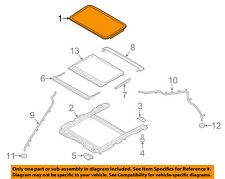 FORD OEM-Sunroof Moonroof Glass DS7Z54500A18B