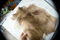Whitetail deer skin hair-on buckskin hide fur trapper so soft tanned leather.