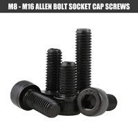 High Tensile 12.9 Thread Socket Head Cap Screws Allen Bolts M6 M8 M10 M12