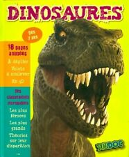 Dinosaures - Romain Amiot – Livre - 262510