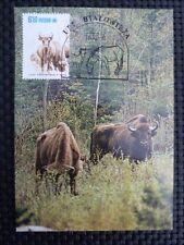 POLEN MK ANIMALS BISON WISENT MAXIMUMKARTE CARTE MAXIMUM CARD MC CM a9959