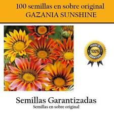 100 graines de soleil GAZANIA sur original