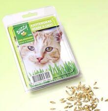 Buzzy Katzengras Samen Katze Saatgut mit Zuchtschale und Anleitung