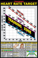 """Heart Rate Training Zone 24"""" x 36"""" Paper Poster -F12_A - by Fitnus Chart Series"""