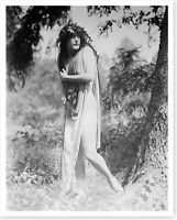 Movie Actress Annette Kellerman Diving Venus Risque 8x10 Silver Halide Photo #2