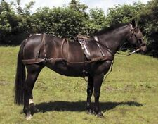 Quality Leather Driving Harness set & Bridle Single BLACK COB sz used ONCE only