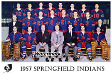 AHL 1957 Springfield Indians Team Picture Color 8 X 12 Photo Picture