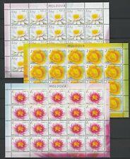 Moldova 2019 Flowers Waterlilies MNH Full sheets