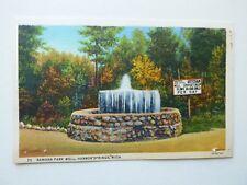 Ramona Park Well, Harbor Springs, Michigan Linen Era Postcard