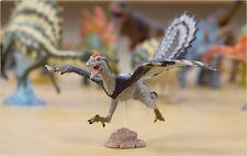 Favorite Archaeopteryx Soft model Designed Kazunari Araki Figure Best Buy Gift