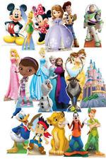 Décorations de fête multicolores princesse pour la maison, pour toutes occasions