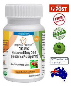 ORGANIC Blushwood Berry (Fontainea Picrosperma) 20:1 Extract - AU Stock