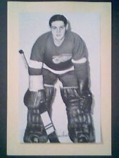 TERRY SAWCHUK (DETROIT RED WINGS) '44-63 BEEHIVE GROUP II PHOTO VERSION 2