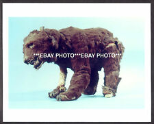 SON OF KONG Forry Ackerman Ackermansion Display CAVE BEAR MODEL Color PHOTO