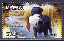 Black Labrador Retriever Dogs MNH stamp LARE36