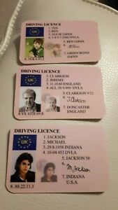Novelty Character Driving Licences Del Boy Simpsons Harry Potter, Wayne Rooney