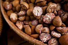 100% Organic Ceylon Betel Nut