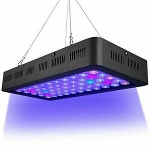 LED Reef Light 165 Watt