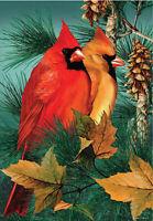 Garden Flag, Cardinals, Autumn Splendor, Birds