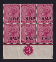 Natal Sc #80 (1895) 1/2p on 1p rose Victoria Counter Block of Six Mint NH