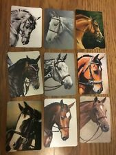 9 Single Swap Horse Playing Cards