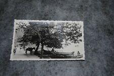 (ETA) photo vintage 1930- 1939 brésil ile de pagneta