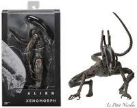 """NECA Alien Covenant Xénomorphe 7"""" figurine noir modèle excluxive classique"""