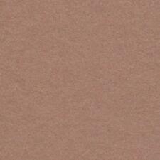 Hazelnut Photographic Background Paper 2.72 x 11m Roll