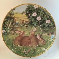 Cute Critters: 12 porcelain plates FREE SHIPPING racoons, squirrels, rabbits