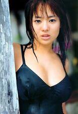 蒼井そら Japanese Idol DVD - Sora Aoi - Sola Aoi : 15 Disc Collection