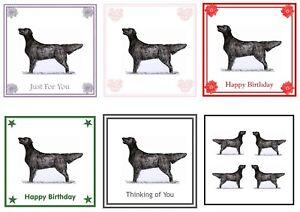 Flatcoat Retriever Card by Curiosity Crafts BIRTHDAY, THINKING OF YOU, BLANK