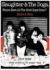 """SLAUGHTER & THE DOGS POSTER """"WHERE HAVE ALL THE BOOT BOYS GONE"""""""