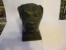 More details for quality resin aged look dog head - looks  like a rottweiller