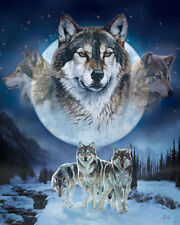 """MHS """"Wolf Pack"""" Al Agnew Luxury Plush Queen Size Blanket, 79 by 94 inches"""