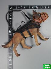 1:6 Scale Soldier Story SDU w/ K9 SS097 - K9 Police Dog w/ Harness