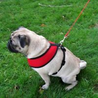 Four Paws Dog Comfort Control Mesh Harness NO tug pull choose size and color