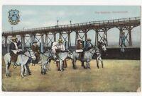 The Natives Cleethorpes Lincolnshire Donkeys Vintage Postcard 761b
