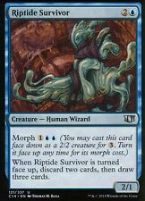 4x Riptide Survivor | NM/M | Commander 2014 | Magic MTG