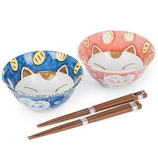 Blue and Pink Cat Japanese Bowl Set
