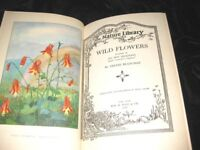 WILDFLOWERS 1930-SELECTED FROM THE WRITINGS OF NELTJE BLANCHAN 35 ILLUSTRATIONS