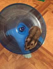 Pet Adjustable Soft Harness Leash Bird Parrot Mouse Hamster Ferrets Rat Pet Pig